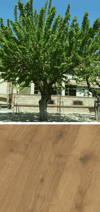 morera árbol madera parquet claro marron